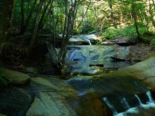 stream-in-montseny
